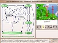Биогеохимический цикл углерода в условиях современной Земли