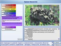 Уровни биосистемы